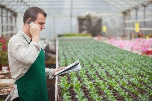 Grower in green house with mobile phone