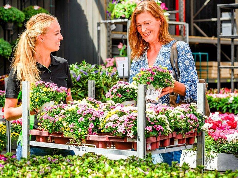 Flower Customers Shelves Shelf Container